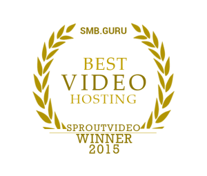 Sproutvideo best video hosting